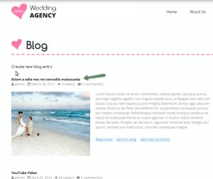 Drupal_How_to_display_an_article_at_the_home_page_and_make_it_stick_to_the_top_of_the_page-5