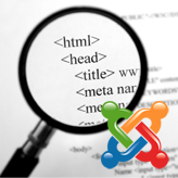 Joomla 3.x. How to insert website, category and article meta data