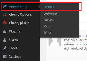WordPress_How_to_install_a_theme_via_admin_panel_1