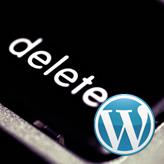 WordPress. How to delete WordPress theme