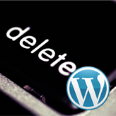 WordPress. Wie entfernt man ein WordPress theme