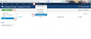 Joomla 3.x. How to change read more button titles-2