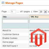 Magento. How to install sample content pages manually