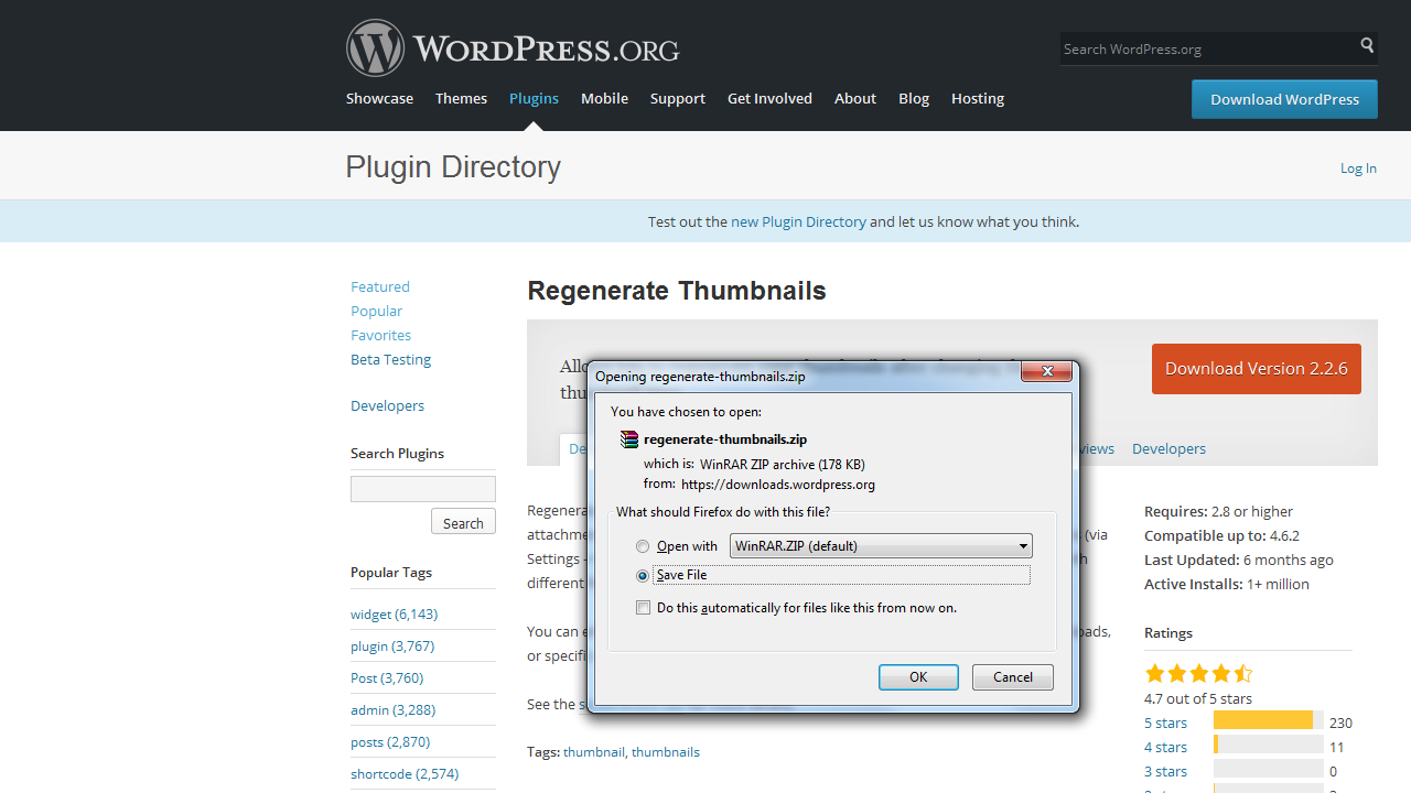 WordPress Troubleshooter. How to install plugins manually_2