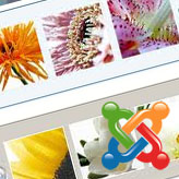 Joomla 2.5 How to work with jCarousel