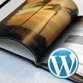 WordPress. How to work with portfolio page