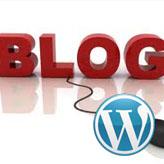 WordPress. Set number of custom posts displayed.