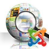 Joomla. ¿Cómo activar y gestionar la búsqueda?
