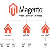 Magento. How to set up and manage Multiple Stores