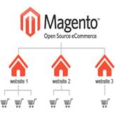 magento_multi_store-setup