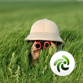ZenCart. ¿Cómo gestionar la búsqueda de productos?