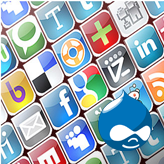Drupal. How to manage Social Share module