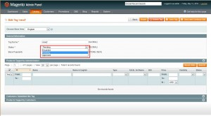 Magento._how_to_add_and_manage_product_tags5