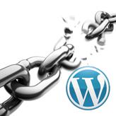 WordPress. Как работать с изображениями в портфолио