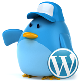 WordPress. How to activate Twitter widget (based on Twitter API 1.1)