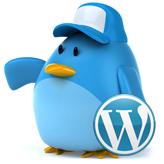 WordPress. Wie aktiviert man ein Twitter Widget (basiert auf Twitter API 1.1)