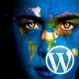 WordPress. How to add theme localization