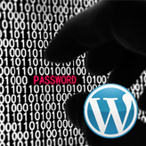 WordPress. How to add post password protection