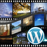 Wordpres_How_to_create_Portfolio_GallerySlider-post