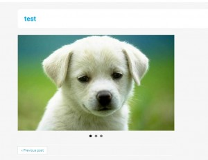 WordPress_How_to_create_Portfolio_Gallery_Slider_post_8