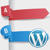 WordPress. How to add tags to custom post types
