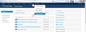 Joomla 3.x_How_to_use_Language_Overrides_Tool-2