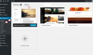 WooCommerce._How_to_install_WooCommerce_WordPress_theme_2