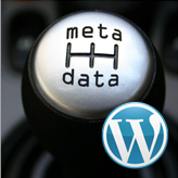 WordPress Cherry 3.x. How to manage posts meta data visibility