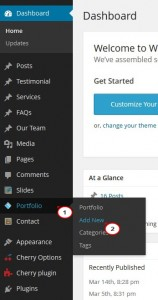 wordpress_portfolio_posts_formats_working_with_1