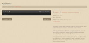 wordpress_portfolio_posts_formats_working_with_6