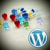 WordPress. How to install Cherry Framework 3.x theme sample data via Cherry plugin