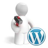 WordPress. How to install a theme via admin panel