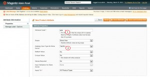 magento_new_and_sale_attributes_adding_4