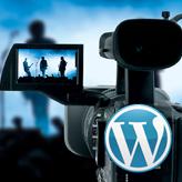WordPress. How to insert video
