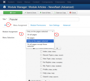 Joomla_3.x_How_to_manage_modules_positions_and_assign_them-_to_certain_pages-7