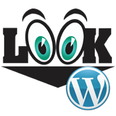 WordPress.-How-to-change-the-admin-panel-view