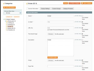 magento-translate-products-and-categories-1