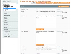 magento-translate-products-and-categories-3
