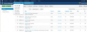 Joomla-3.0-How-to-link-the-category-to-the-Hidden-Menu-item5
