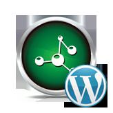 WordPress.-Advanced-menu-item-options