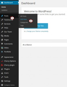 WordPress.-How-to-use-blog-posts-formats-1