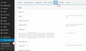Wordpress._How_to_remove_sidebar_from_posts'_single_pages-1