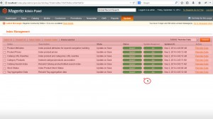 magento_how_to-re-index_data_and_in_what_cases_it_is_needed_2