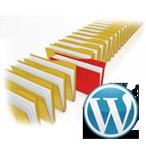 WordPress.-How-to-assign-a-portfolio-category-to-a-certain-portfolio-page