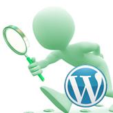 WordPress.-How-to-work-with-custom-posts1
