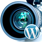 WordPress. How to replace a parallax video