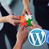 WordPress.-How-to-add-Our-Team-post