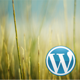 WordPress.-How-to-reinstall-the-engine-without-reuploading-the-files
