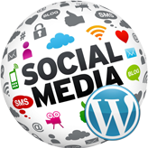 WordPress.-How-to-work-with-the-social-icons-(based-on-Cherry-options)