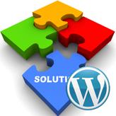 WordPress. Wie man das Problem mit der Bildunterschrift behebt